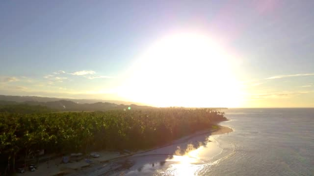4k aerial sunset in tropical island with palm trees - hispaniola stock videos & royalty-free footage