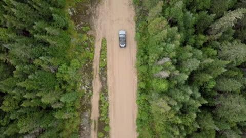 vídeos y material grabado en eventos de stock de vista aérea de video de 4 k, de un camino en el bosque - carretera de tierra