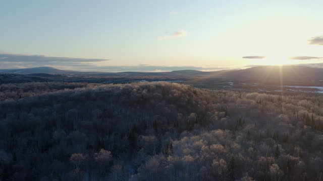 4k aerial video view of boreal nature forest in winter after freezing rain at sunrise, quebec, canada - quebec stock videos & royalty-free footage