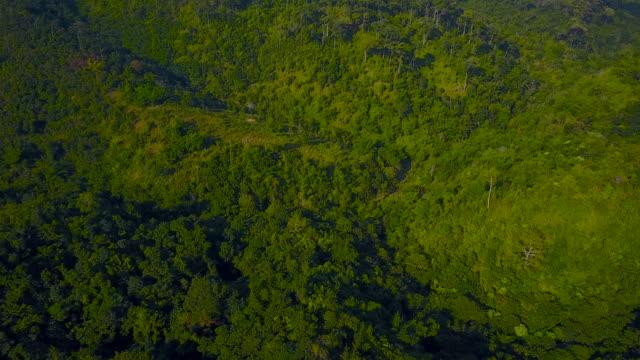 Aerial View 4K : Taksin Maharat National Park