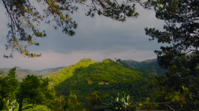 vídeos y material grabado en eventos de stock de vista aérea 4k: parque nacional de taksin maharat - pino conífera