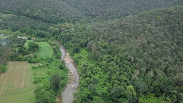 Aerial view Above a River creek and forest on the Mountain