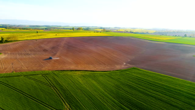 Aerial view agricultural farming land growing vegetable crops.