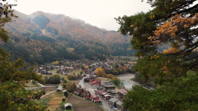aerial view and dolly forward of shirakawago village in autumn season, gifu, japan. - thatched roof stock videos & royalty-free footage