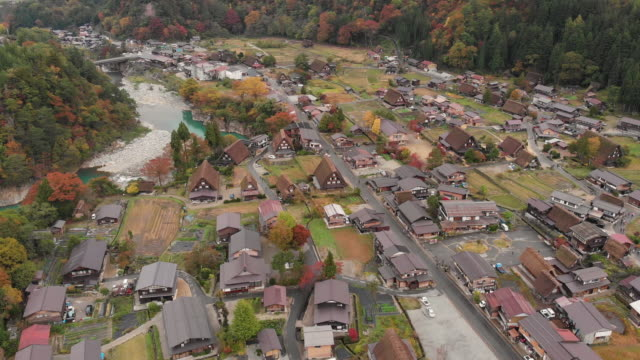 aerial view and tilt up of shirakawago village in autumn season, gifu, japan. - non urban scene stock videos & royalty-free footage