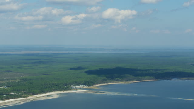 aerial view apalachicola national forest gulf of mexico - florida us state stock videos & royalty-free footage