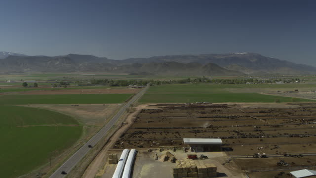 Aerial view approaching cattle feed lot near mountain range / Aurora, Utah, United States