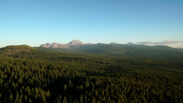 aerial view approaching lassen volcanic national park over vast stretches of forest. - cascade range stock videos & royalty-free footage