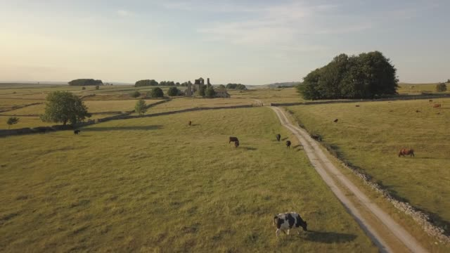 aerial view around magpie mine, ashford in the water, bakewell, peak district national park, derbyshire, england, united kingdom, europe - derbyshire stock-videos und b-roll-filmmaterial
