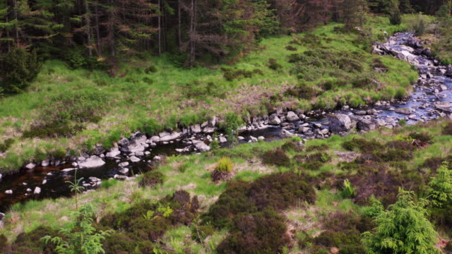 vidéos et rushes de vue aérienne comme un drone vole vers un petit ruisseau qui coule à travers une zone de forêt dans le sud-ouest de l'ecosse - remote location