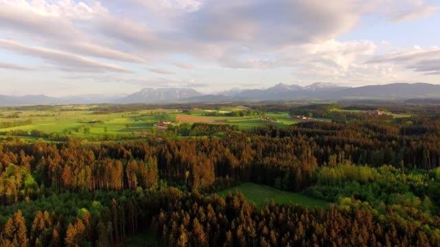 vídeos y material grabado en eventos de stock de vista aérea: bávaro del bosque en primavera al atardecer - austria