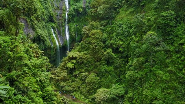 4k : aerial view by drone footage madakaripura waterfall, east java, indonesia - java stock videos & royalty-free footage