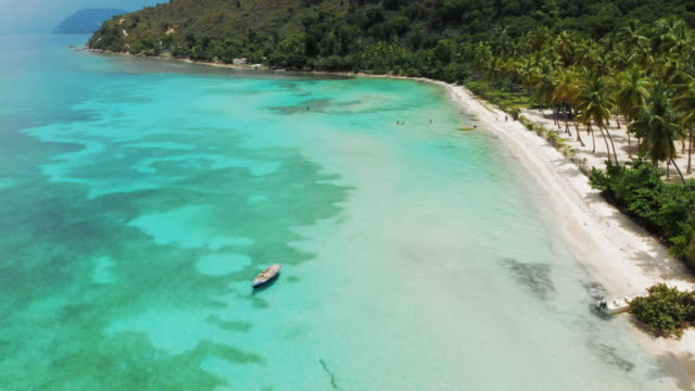 aerial view clear blue ocean meets tropical island at white sandy beach - tropical tree stock videos & royalty-free footage