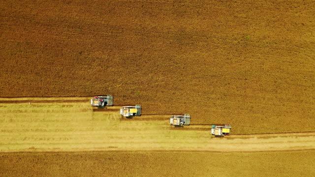 水田田フィールド上の空中写真コンバインハーベスター操作。 - 四つ点の映像素材/bロール