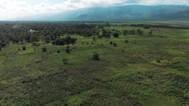 aerial view cultivated land in a valley in haiti, with a mountain behind - patchwork stock videos & royalty-free footage