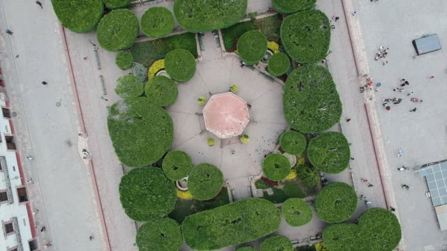 Aerial View Directly Above Town Square with Topiary