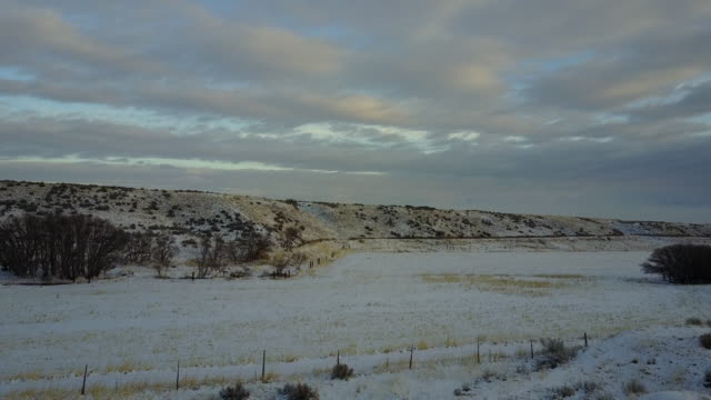 aerial view empty fields - plowed field stock videos & royalty-free footage