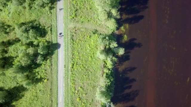 4k aerial view family cycling in nature in summer - carrying stock videos & royalty-free footage