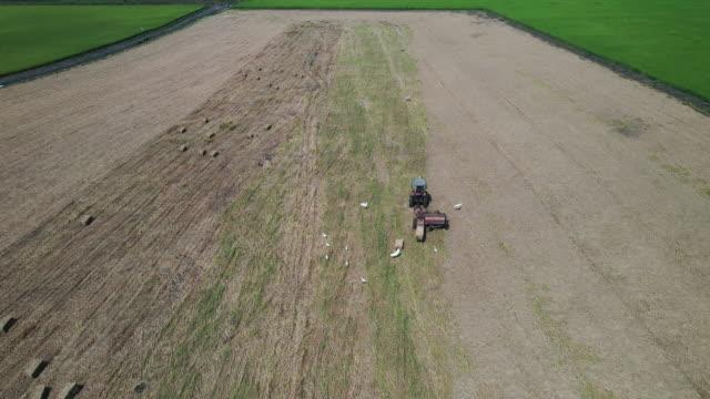 vidéos et rushes de vue aérienne un ouvrier agricole porte des piles de paille cylindriques rondes, champ agricole - sec