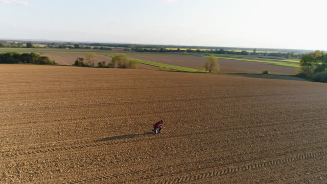 ws aerial view farmer examining dirt in sunny,vast,rural plowed field - quality control stock videos & royalty-free footage
