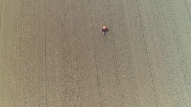 ws aerial view farmer spreading,sowing seeds in plowed field - plowed field stock videos & royalty-free footage