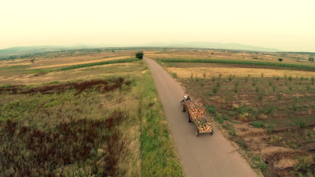Luftaufnahme: Bauernhof Traktor Brennholz