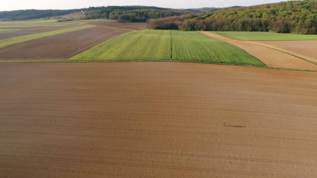 WS Aerial view farmer walking in sunny,vast,rural plowed field
