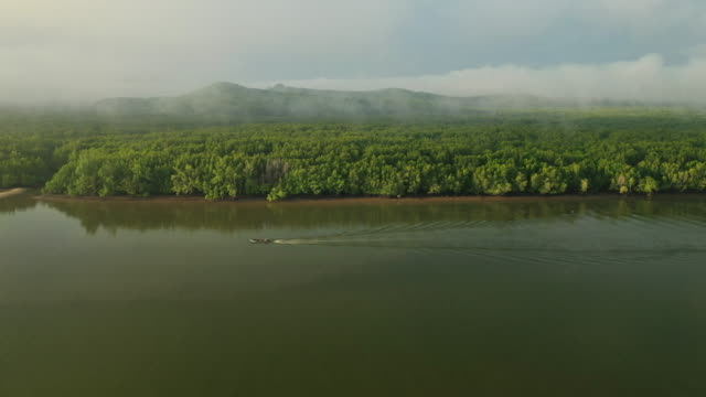 aerial  view fishing boat  with mangrove forest on morning at phang-nga bay - stratus stock videos & royalty-free footage