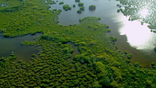 Aerial view Florida National Park Everglades marshland swamps