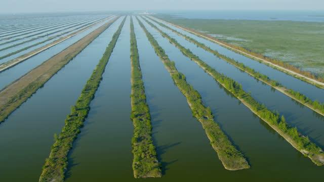 Aerial view Florida National Park Everglades natural wetlands