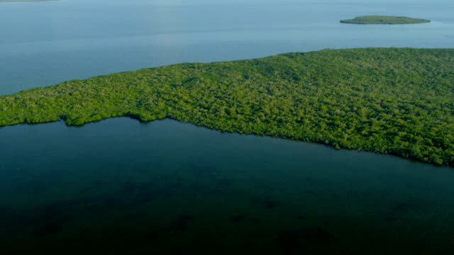 stockvideo's en b-roll-footage met aerial view florida national park everglades natural wetlands - the florida keys