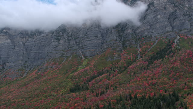 aerial view flying over colorful foliage towards cliffs - provo stock videos and b-roll footage