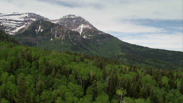 Aerial view flying over green forest towards mountain top.