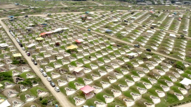 aerial view : flying over the cemetery on memorial day - chonburi province stock videos & royalty-free footage
