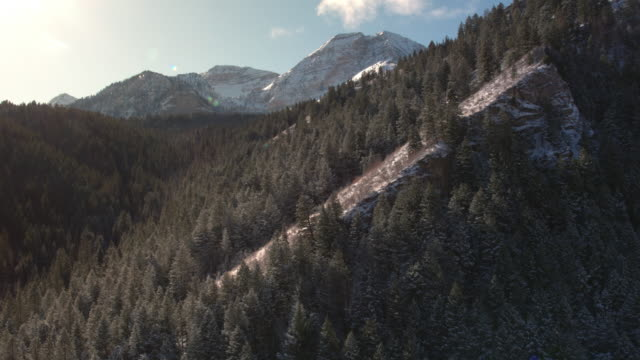 Aerial view flying past snowy hill side in forest
