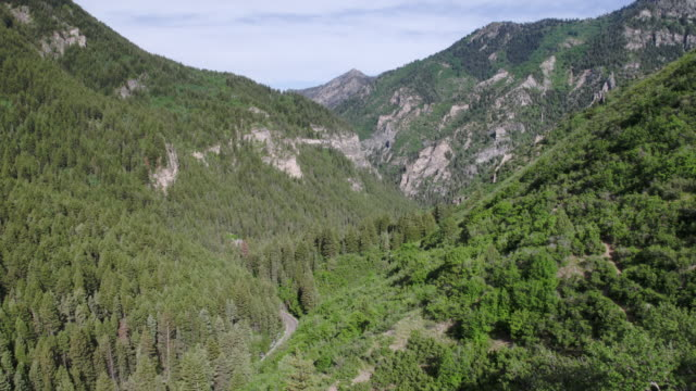 aerial view flying through canyon with green trees. - american fork canyon stock videos and b-roll footage