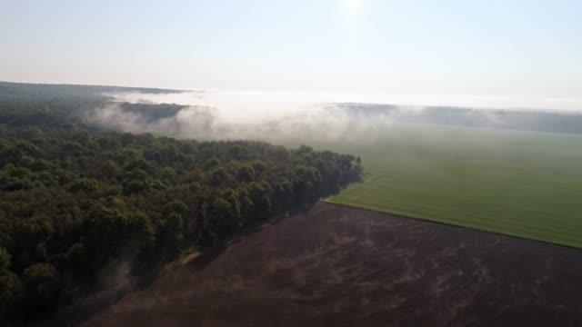 ws aerial view fog over sunny rural landscape,prekmurje,slovenia - plowed field stock videos & royalty-free footage
