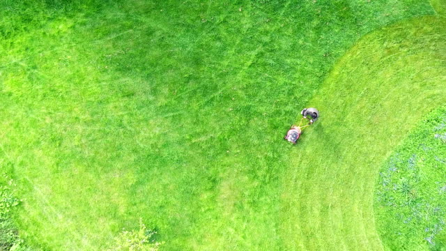 aerial view grass trimming lawnmower - lawn stock videos & royalty-free footage