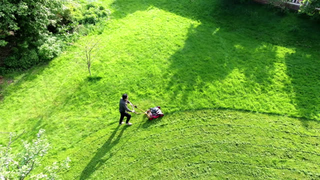 aerial view grass trimming lawnmower - lawn mower stock videos and b-roll footage