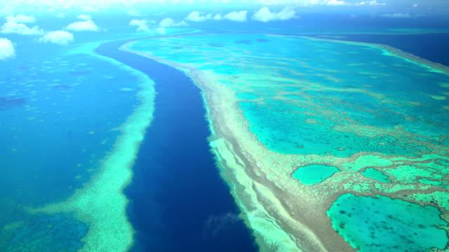 aerial view great barrier reef pacific ocean australia - great barrier reef stock videos & royalty-free footage
