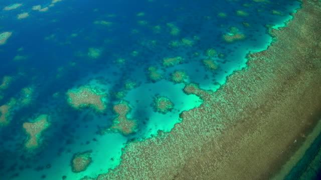 Aerial view Great Barrier Reef Pacific Ocean Australia