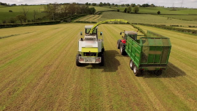 aerial view harvester filling trailer pulled by tractor in field - nutzfahrzeug stock-videos und b-roll-filmmaterial