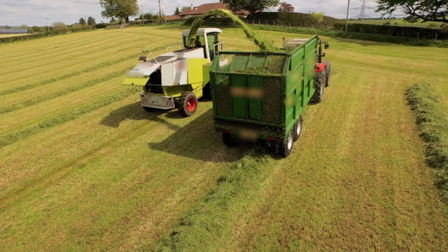 aerial view harvester filling trailer pulled by tractor - nutzfahrzeug stock-videos und b-roll-filmmaterial