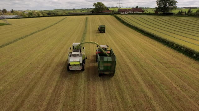 vidéos et rushes de aerial view harvester & two tractors working in field - moderne