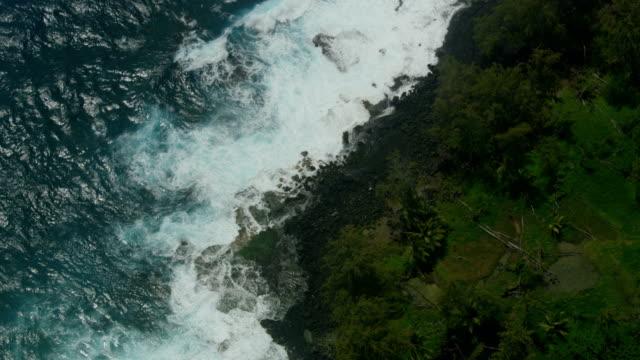 aerial view hawaiian coastline fertile landscape big island - tectonic stock videos & royalty-free footage