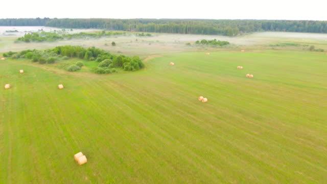 aerial view. haystack in a field. aerial drone shot. - haystack stock videos & royalty-free footage