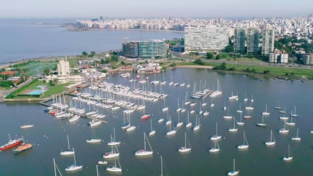 aerial view, high angle view, pocitos neighbourhood, montevideo's coastline, uruguay - 鎮静薬点の映像素材/bロール
