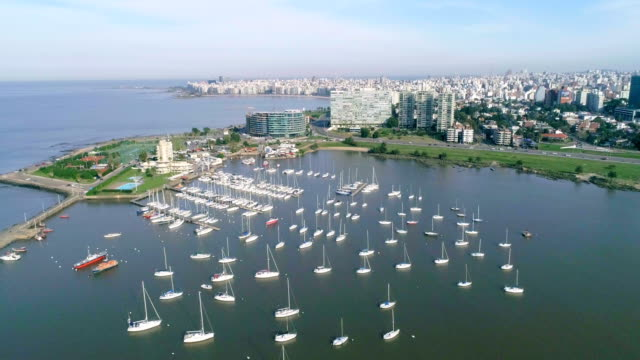aerial view, high angle view, pocitos neighbourhood, montevideo's coastline, uruguay - sedative stock videos & royalty-free footage