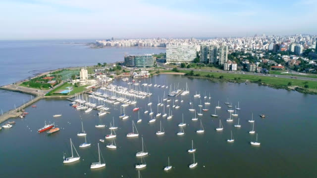 vídeos de stock, filmes e b-roll de aerial view, high angle view, pocitos neighbourhood, montevideo's coastline, uruguay - uruguai