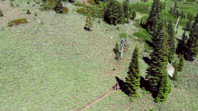 aerial view hikers passing each other on a trail - weitere themen stock-videos und b-roll-filmmaterial